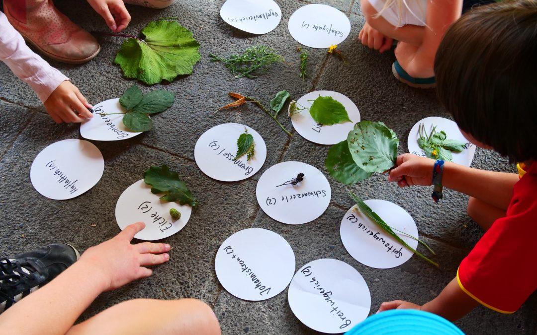 Kids for Nature – ein nachhaltiger Sommer